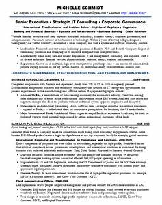 resume samples chief information officer cio banking With cio resume template