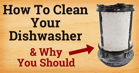 How To Clean Your Dishwasher & Why You Should  Home Hints