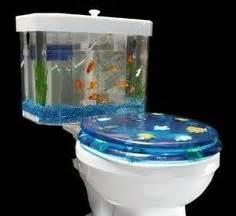 Water Beds N Stuff by My Future Fish Tanks On Pinterest Fish Tanks Aquarium