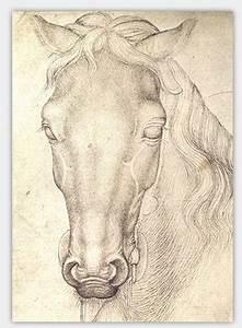 Pferde Zeichnenlernen Tipps Fr Die Gekonnte Pferdezeichnung