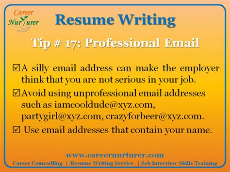 Tip For Writing A Resume by Guidelines For Writing A Professional Resume Cv Career Counselling Aptitude Test Centre