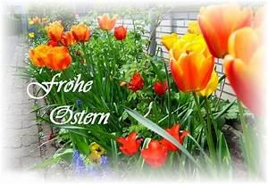 Schöne Ostertage Bilder : ein sch nes osterfest foto bild karten und kalender osterkarten spezial bilder auf ~ Orissabook.com Haus und Dekorationen