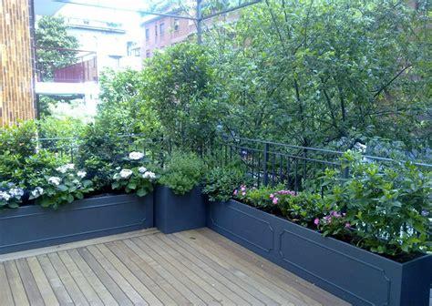 piante per terrazzo un terrazzo ombreggiato al primo piano i giardini di