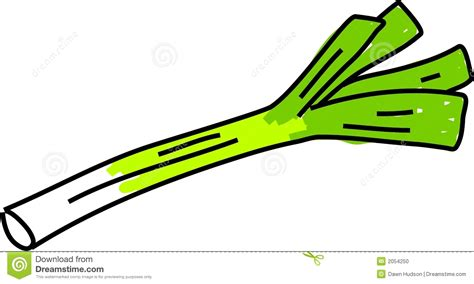 Leeks Images Leek Clipart Clipground