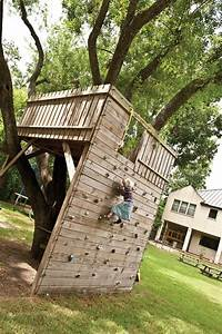 Tree fort with climbing wall access! How cool is this