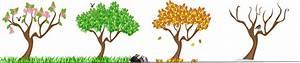 clipartist.net » Clip Art » s saisons four seasons trees ...