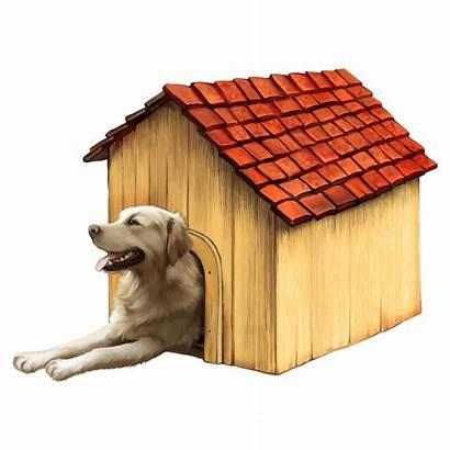 Outside Golden Dog Retrievers Breeds