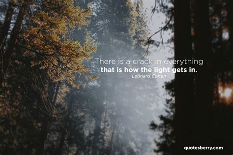 how the light gets in there is a in everything that s how the