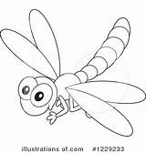 Dragonfly Clipart Outline Illustration Drawing Template Coloring Clip Sketch Pencil Pages Royalty Simple Moon Rf Bannykh Alex Getdrawings sketch template