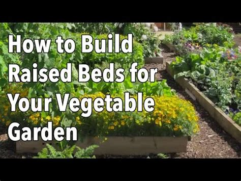 raised beds   garden   farmers