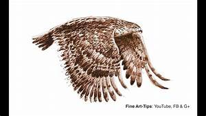 How To Draw A Flying Hawk With Fountain Pen Narrated