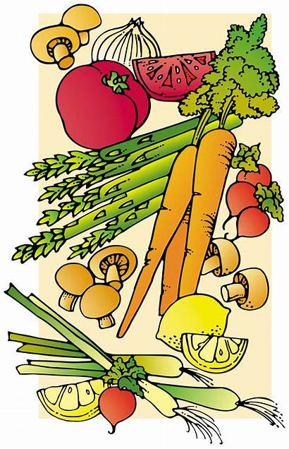 Foods Healthy Clipart Clip