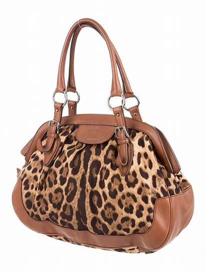 Bag Dolce Gabbana Shoulder Animalier Handbags Bags