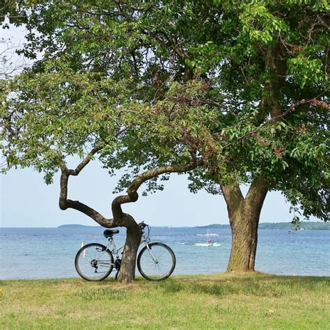 scenic rides best bike rides in the united states scenic bike routes in all 50 states