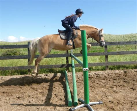 donegal equestrian centre missy jump