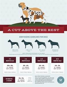 Raw Dog Feeding Chart Raw Feeding Freebies Perfectly Rawsome Raw Feeding Guidelines