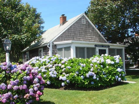 cottage rentals harwich vacation rental home in cape cod ma 02646 one