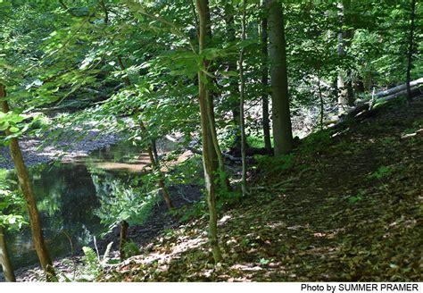 fiddlers creek preserve  jersey trails association