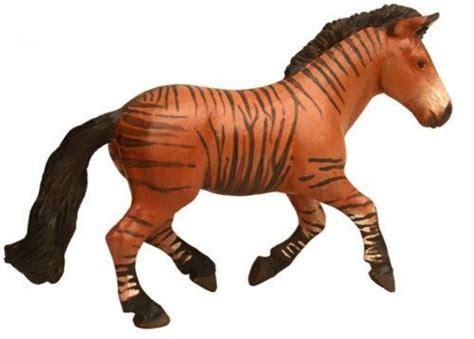 images  animal decoration  pinterest