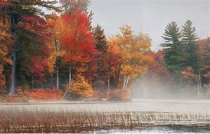 Trees Vermont Colorful Fall Lake Nature Morning