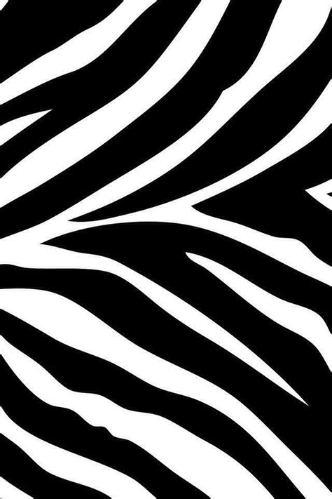 Animal Print Wallpapers For Android - zebra animal print wallpaper for iphone or android