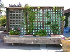 Sichtschutz Mit Pflanzen : sichtschutz mit sitzbank statt pflanzen moodboard ~ Michelbontemps.com Haus und Dekorationen