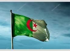 drapeau Algérie sur le vent — Photographie flogeljiri