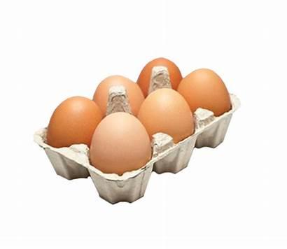 Eggs Pack Egg Cold Carton Farm Ltd