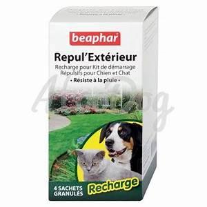 Repulsif Chat Exterieur Jardiland : repul 39 exterieur pour chien et chat ~ Melissatoandfro.com Idées de Décoration