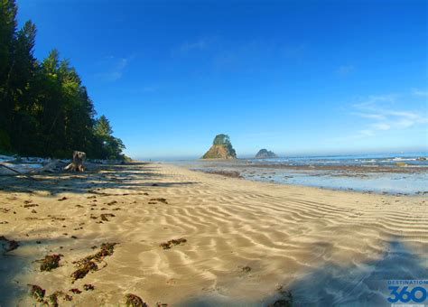 washington beaches state beach ruby ocean shores north