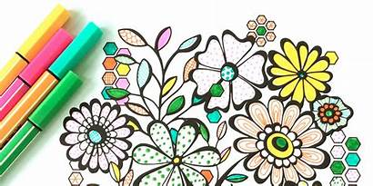 Coloring Adult Books Adults Morrison Colouring Jenean