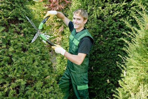 Garten Und Landschaftsbau  Beruf Gärtner
