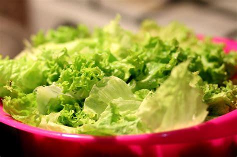 ensalada de lechuga bajas calorias recetas de ensaladas