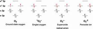 Chapter 1 Overview Of Reactive Oxygen Species  9781782622208