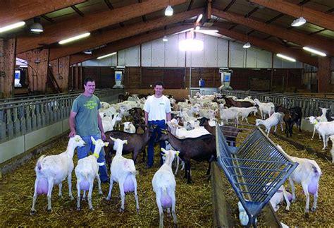 chambre agriculture lozere produire du lait de chèvre bio