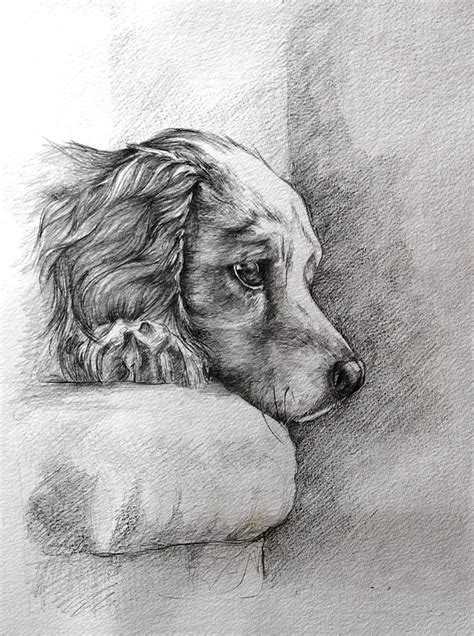 patience drawing  ann pease