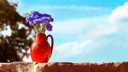 Vase Pretty Wallpapers Flowers Desktop Sky Wonderful