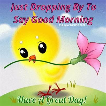 Morning Say Dropping