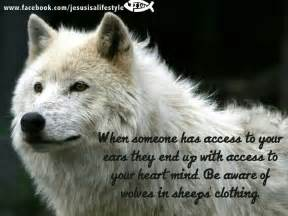 Quotes About Sheep in Wolves' Clothing