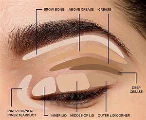 Where To Apply Eyeshadow   Eye Makeup Diagram