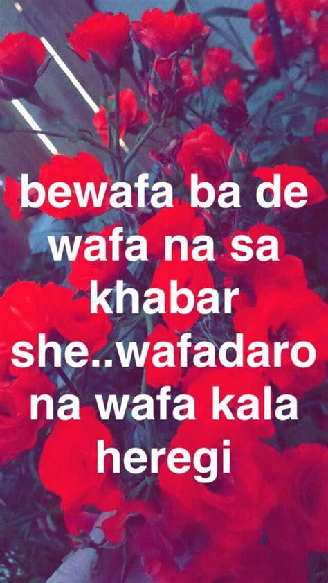 pashto shayari   pashtoons  break bones
