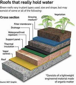 Green roofs environmental benefits Green roofs can be ...