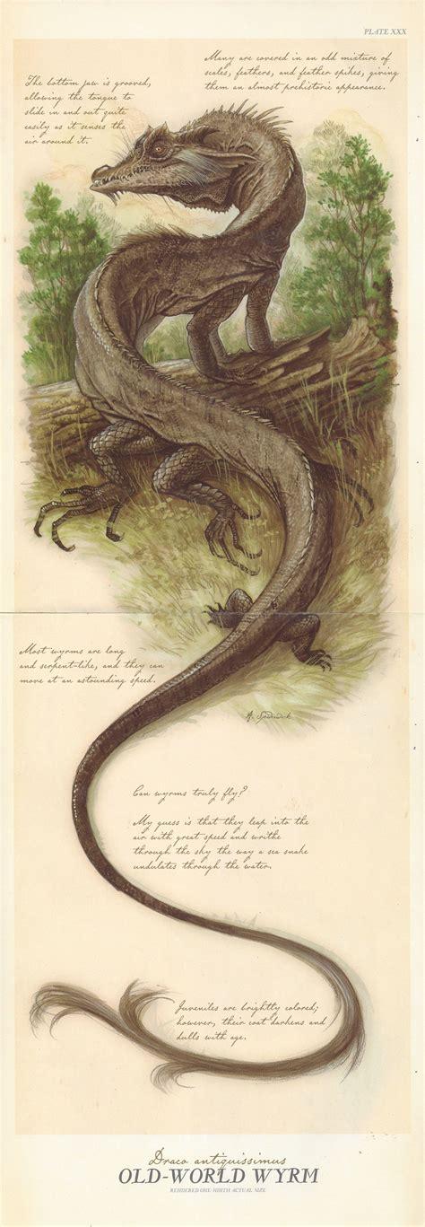 Dragon Spiderwick Chronicles Wiki Fandom Powered By Wikia