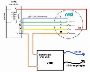 Model 60 Wiring In Carrier Furnace Humidifier Wiring