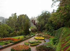 Ooty, India Tourist Information