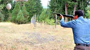 Comment Tuer Un Frelon : frelon asiatique comment d truire les nids au fusil de chasse ~ Melissatoandfro.com Idées de Décoration