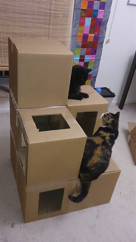 How To Build An Easy Cat House  Google Search  For The