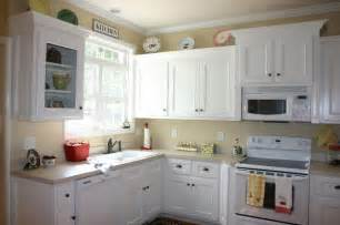 ideas for painting kitchen cabinets the painting kitchen cabinets ideas for your home my kitchen interior mykitcheninterior