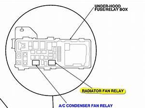 Corvette Cooling Fan Relay Wiring Diagrams  Corvette  Auto Wiring Diagram