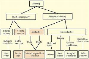 There Are Different Types Of Memory
